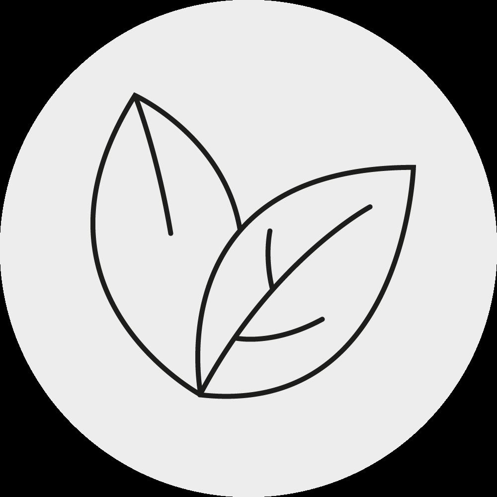 Nachhaltige Lösungen Icon